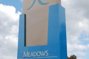 meadows regional medical center7